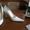Туфли белые Moda Donna #289332