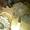 Вал каскадного элеватора КНТ 30.010 для картофелекопалки КТН-2В #741206