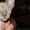 продам котенка (девочка) Канадский Сфинкс #1466533