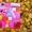 Развивающие доски - Бизиборд #1495610