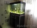 Срочно продам 200 литровый аквариум с тумбочкой и полным комплектом оборудования